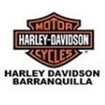 MOTOR HARLEY DAVIDSON WEB
