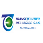 TRANSEJECUTIVOS DEL CARIBE SAS WEB